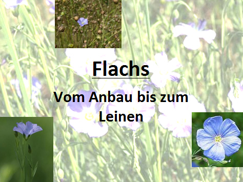 flachsblog_ppt01