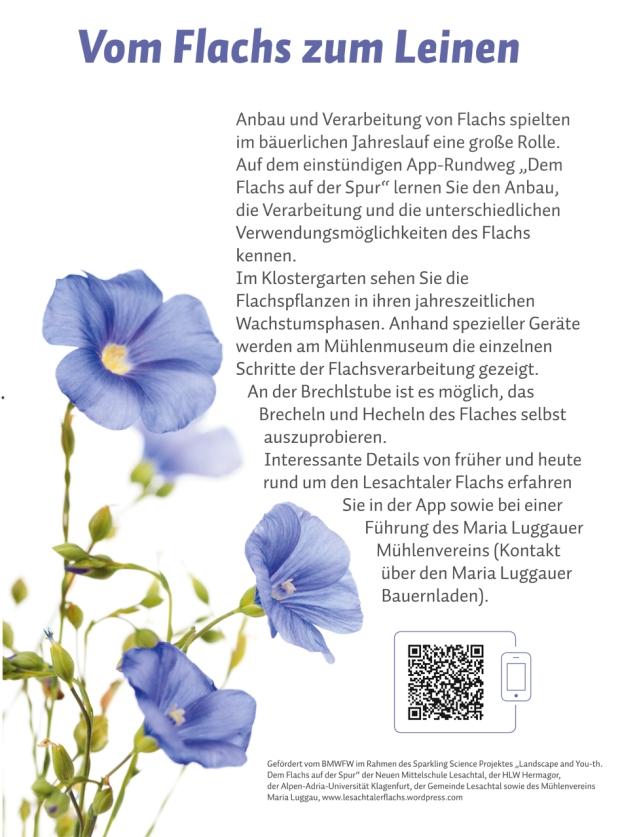 flachsblog_schild_kg848